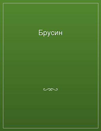 Брусин Салтыков-Щедрин